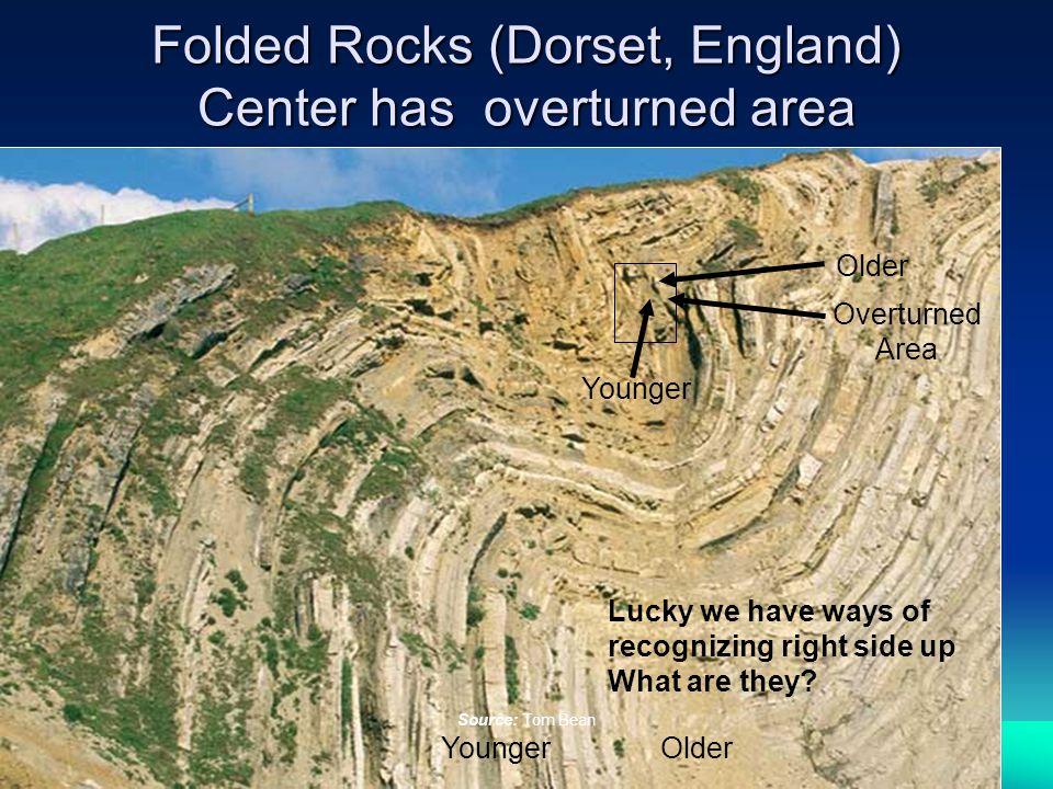 Folded Rocks (Dorset, England) Center has overturned area