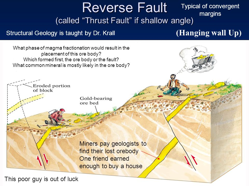 Reverse Fault (called Thrust Fault if shallow angle)
