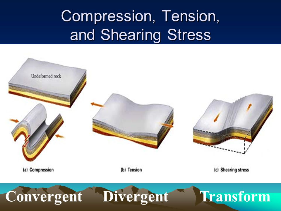 Compression, Tension, and Shearing Stress