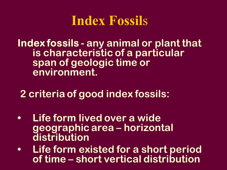 Index Fossils Index fossils - any animal or plant that is characteristic of a particular span of geologic time or environment.