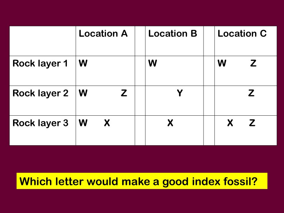 Which letter would make a good index fossil