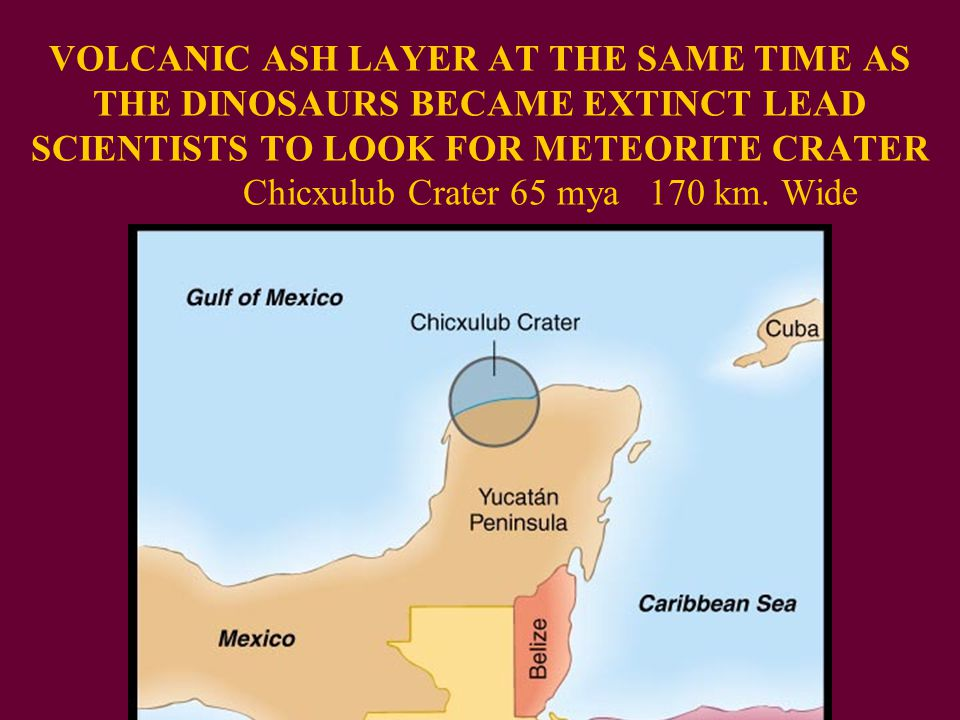 VOLCANIC ASH LAYER AT THE SAME TIME AS THE DINOSAURS BECAME EXTINCT LEAD SCIENTISTS TO LOOK FOR METEORITE CRATER Chicxulub Crater 65 mya 170 km.
