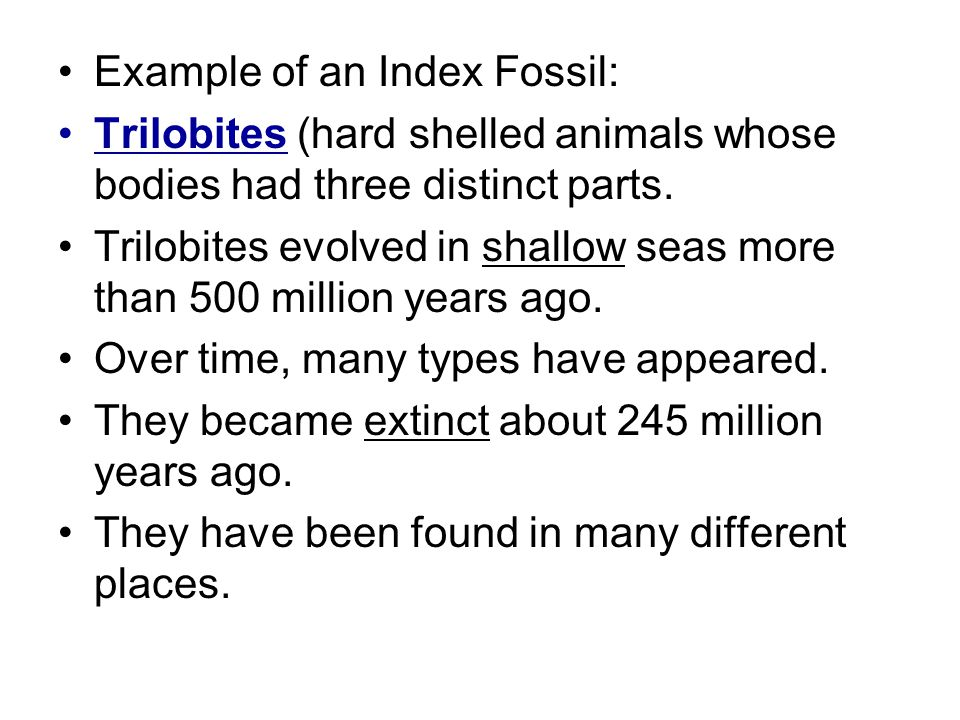 Example of an Index Fossil: