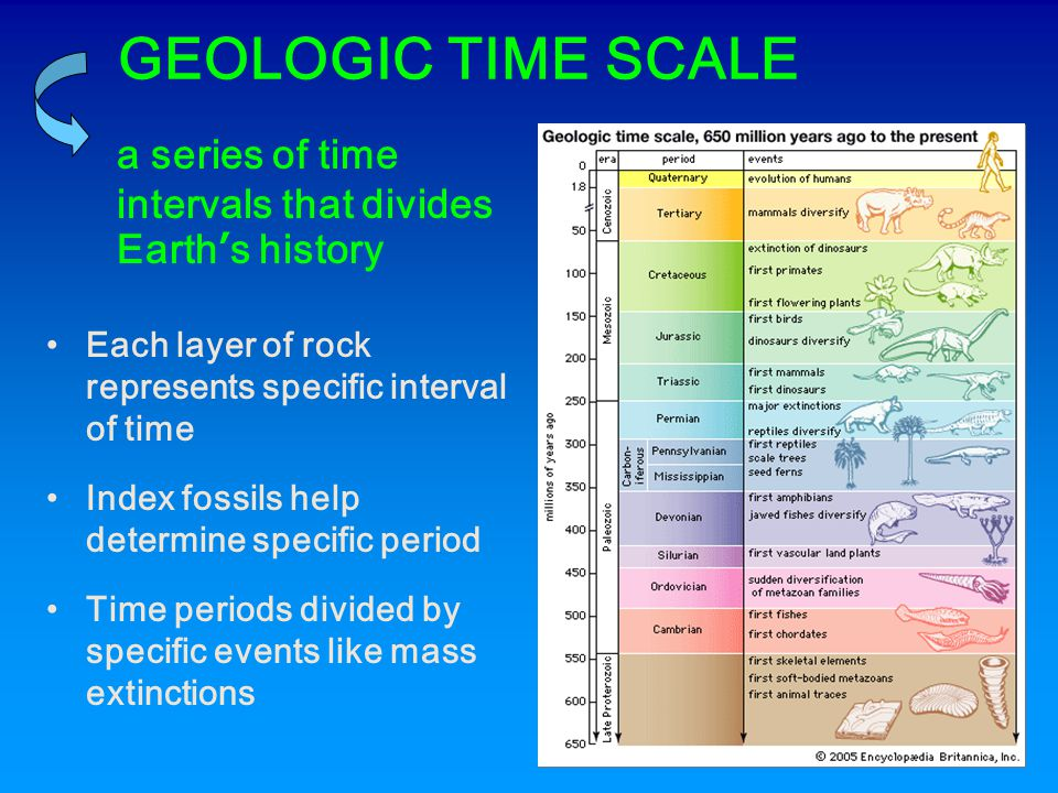 GEOLOGIC TIME SCALE a series of time intervals that divides Earth's history. Each layer of rock represents specific interval of time.