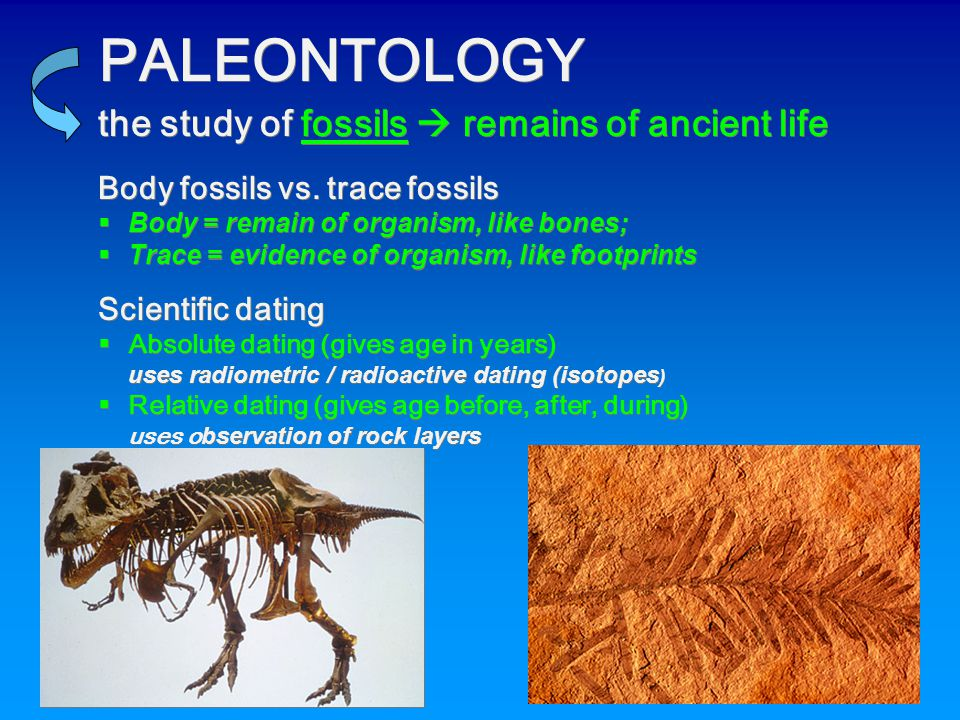 PALEONTOLOGY the study of fossils  remains of ancient life