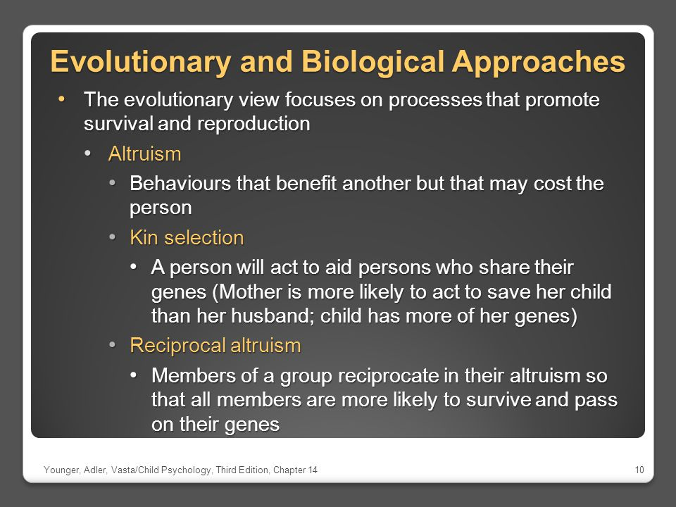 Evolutionary and Biological Approaches