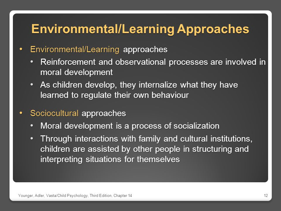 Environmental/Learning Approaches