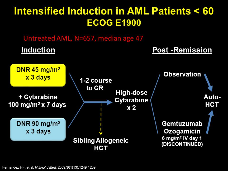 Intensified Induction in AML Patients < 60 ECOG E1900