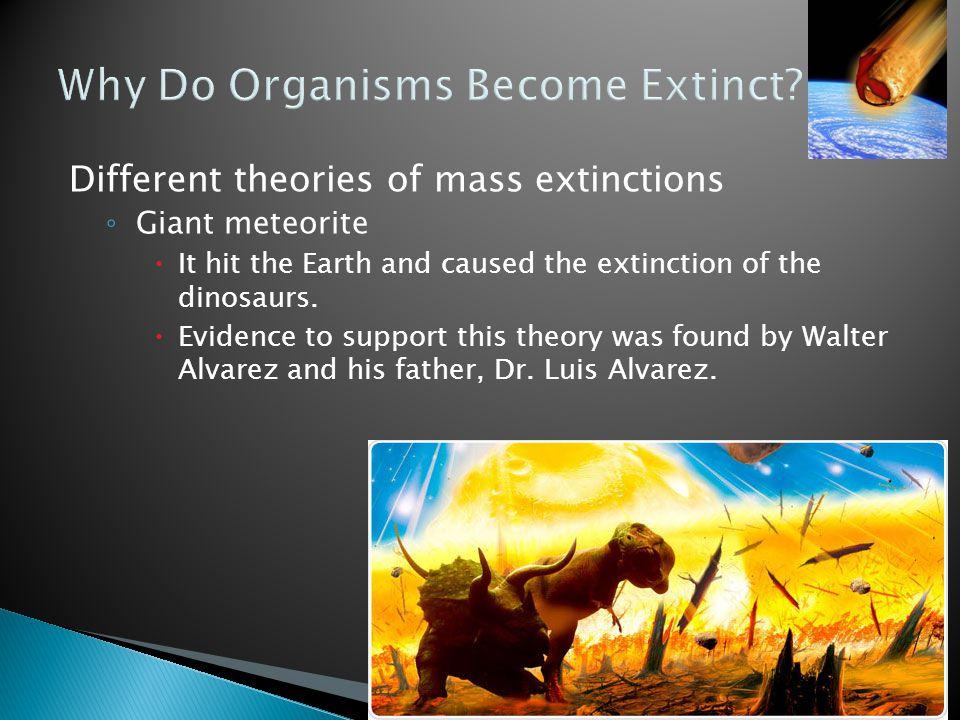 Why Do Organisms Become Extinct
