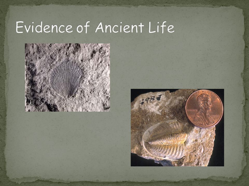 Evidence of Ancient Life