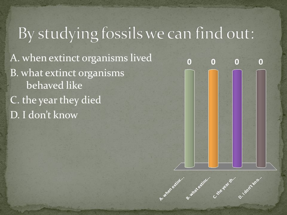 By studying fossils we can find out: