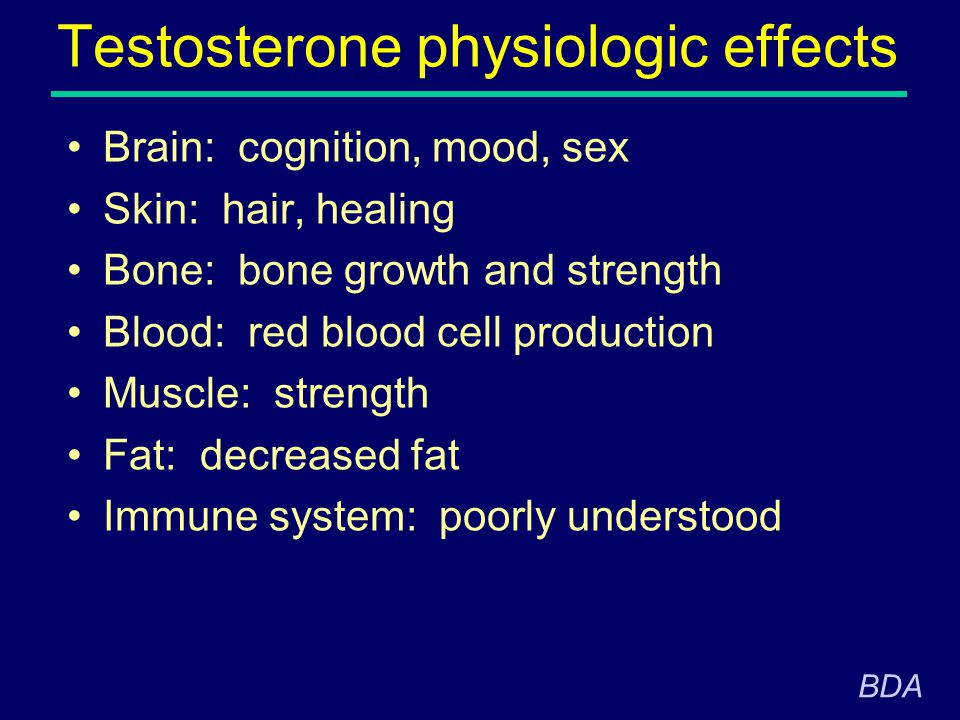 Testosterone physiologic effects