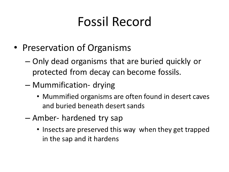 Fossil Record Preservation of Organisms