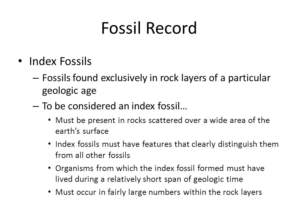 Fossil Record Index Fossils