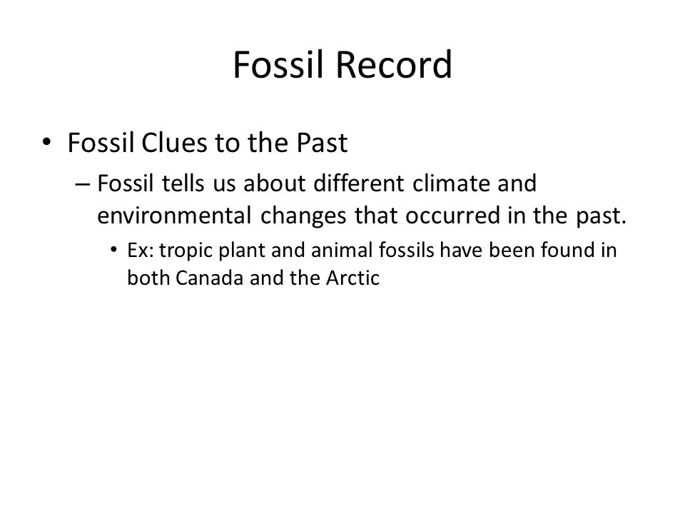 Fossil Record Fossil Clues to the Past