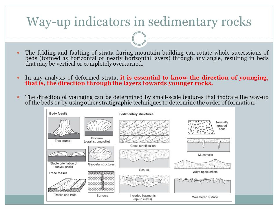 Way-up indicators in sedimentary rocks
