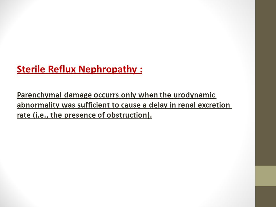 Sterile Reflux Nephropathy :