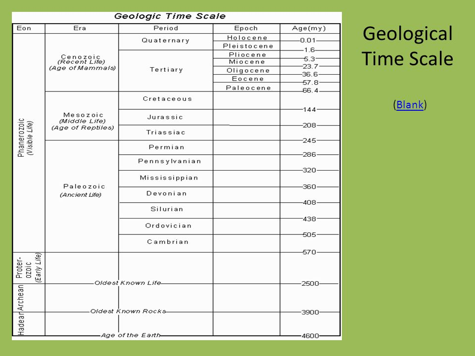 Geological Time Scale (Blank)