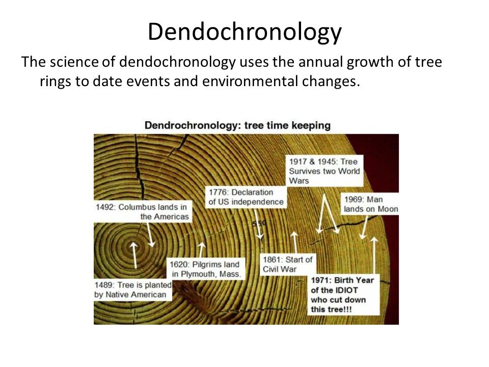 Dendochronology The science of dendochronology uses the annual growth of tree rings to date events and environmental changes.