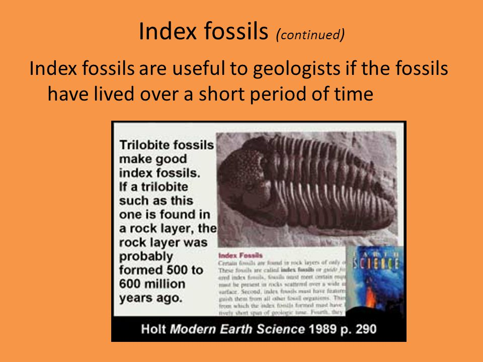 Index fossils (continued)