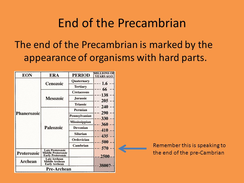 End of the Precambrian The end of the Precambrian is marked by the appearance of organisms with hard parts.