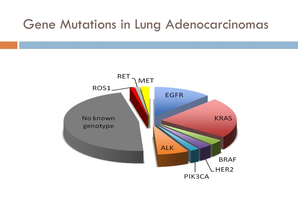 Gene Mutations in Lung Adenocarcinomas