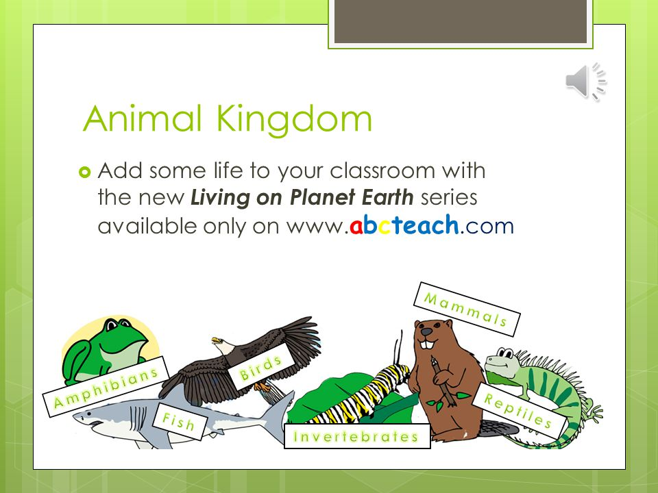Animal Kingdom Add some life to your classroom with the new Living on Planet Earth series available only on www.abcteach.com.