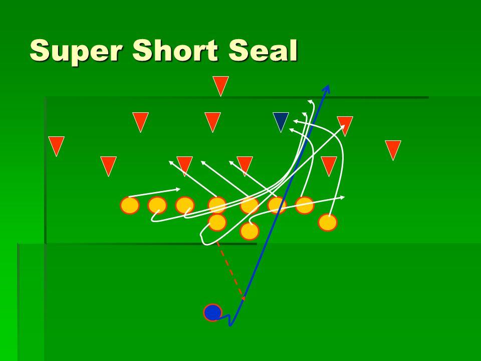 Super Short Seal