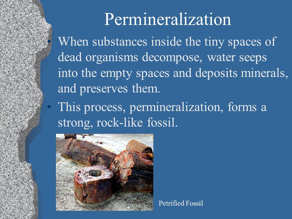 Permineralization