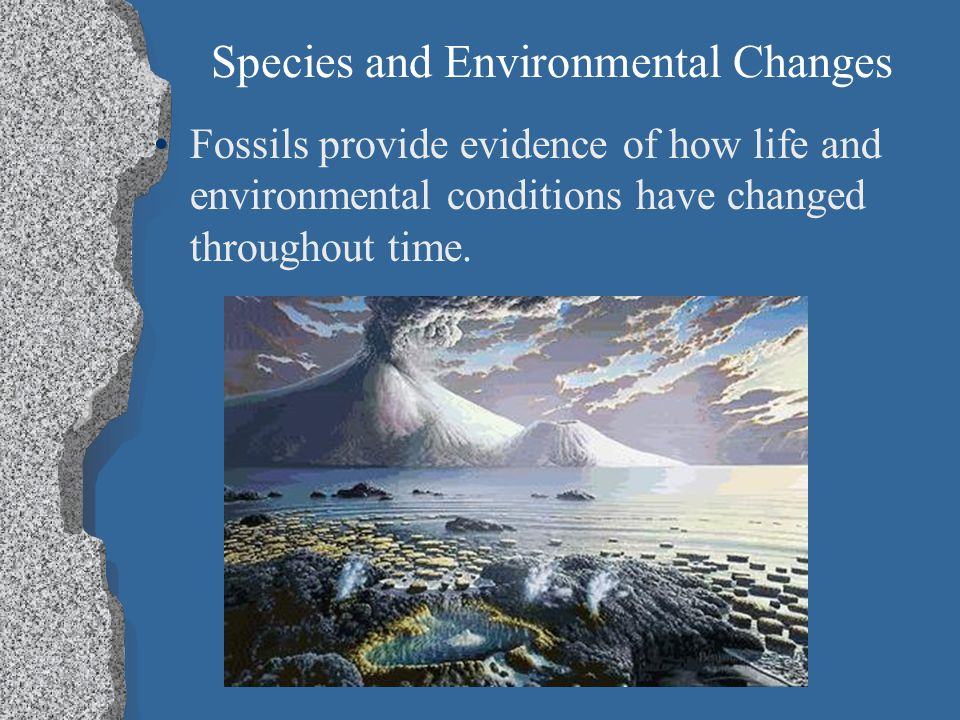Species and Environmental Changes