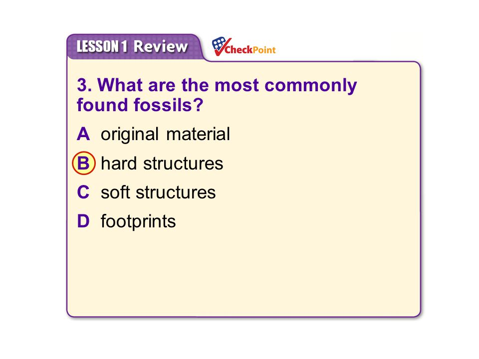 3. What are the most commonly found fossils A original material