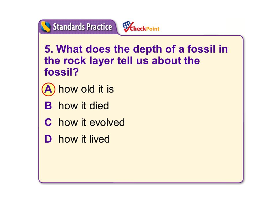 A B. C. D. 5. What does the depth of a fossil in the rock layer tell us about the fossil A how old it is.