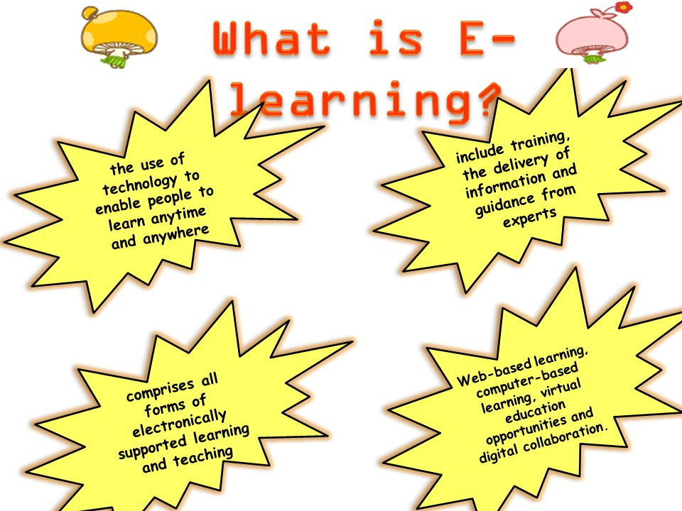 What is E-learning include training, the delivery of information and guidance from experts.