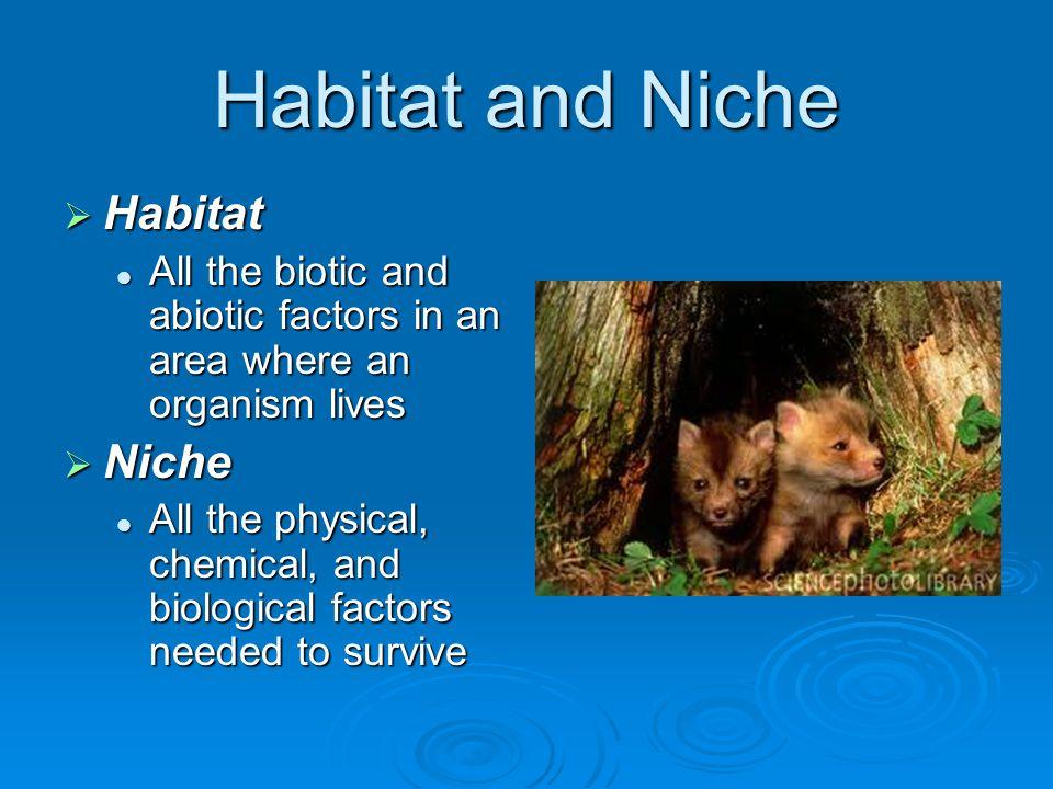 Habitat and Niche Habitat Niche