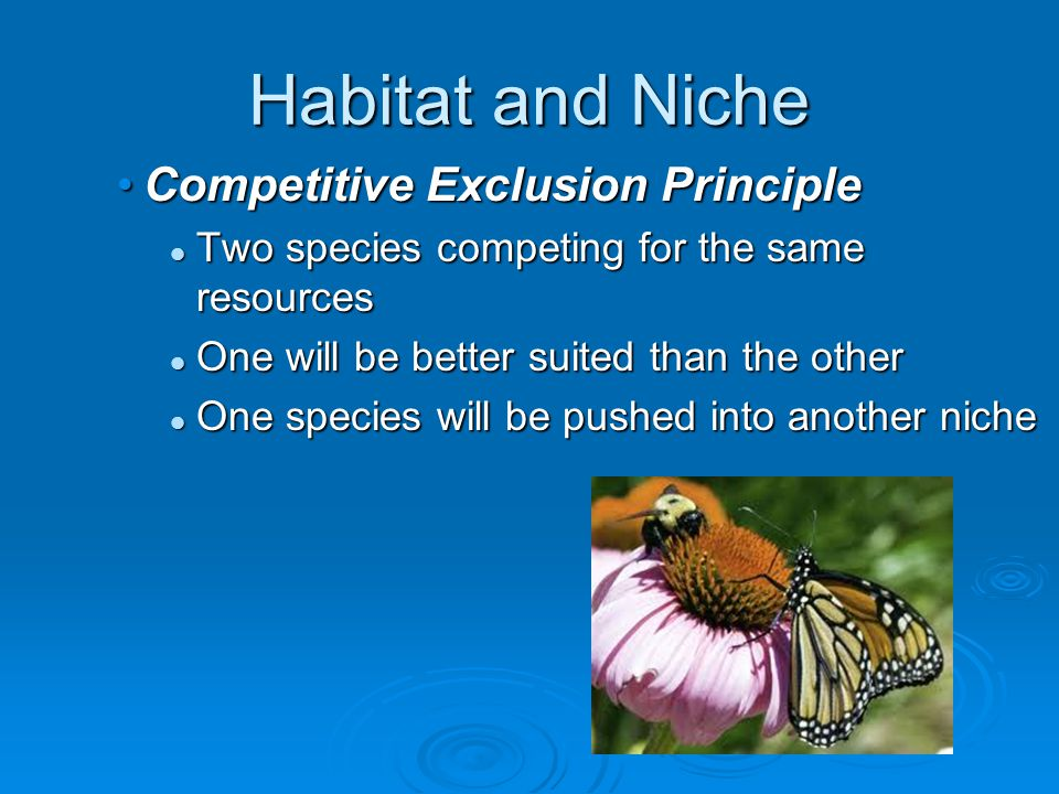 Habitat and Niche Competitive Exclusion Principle