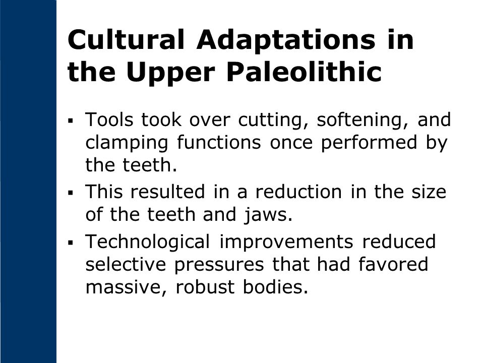Cultural Adaptations in the Upper Paleolithic