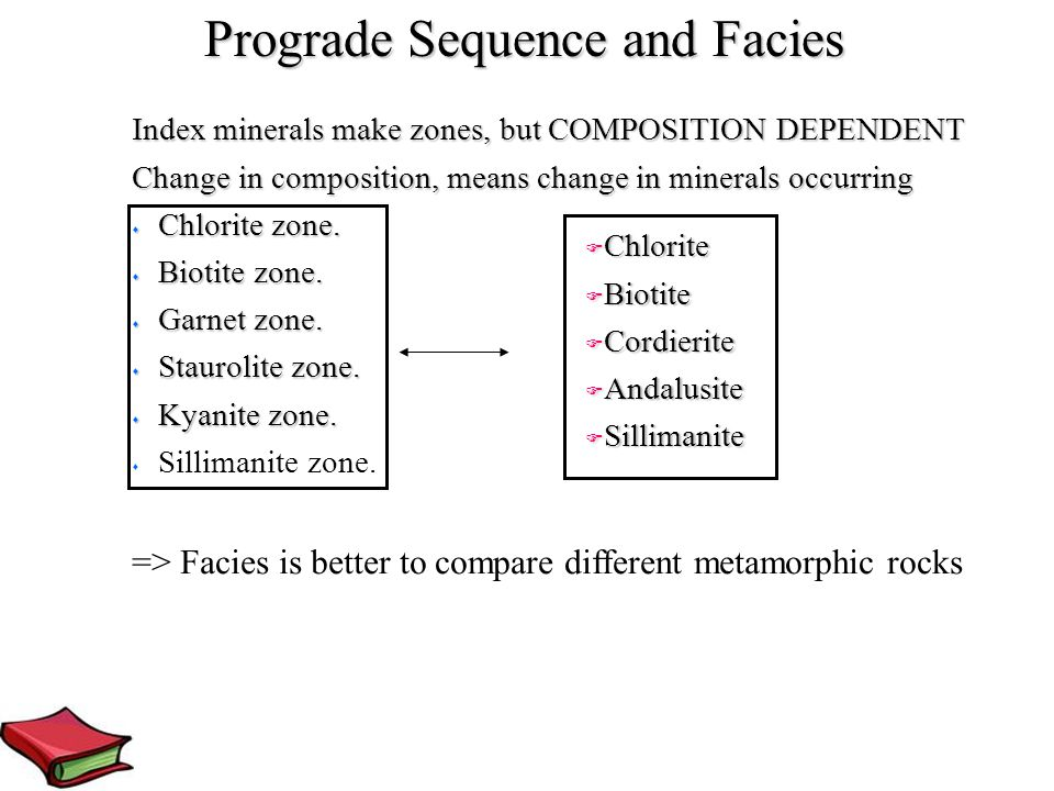 Prograde Sequence and Facies