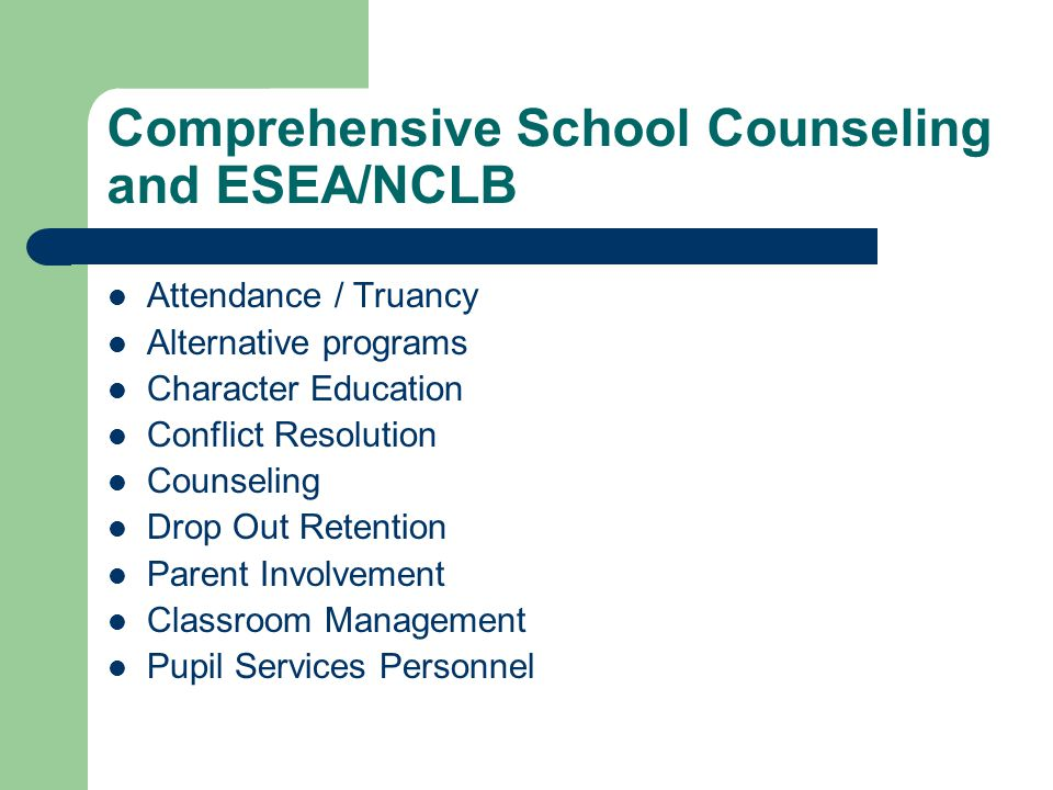 Comprehensive School Counseling and ESEA/NCLB