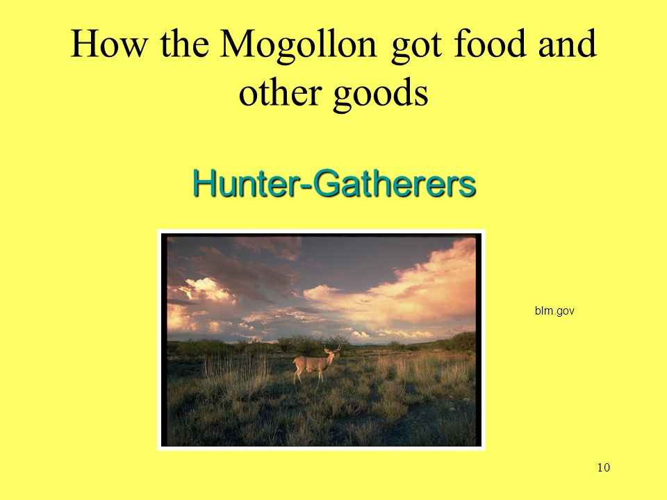 How the Mogollon got food and other goods Hunter-Gatherers
