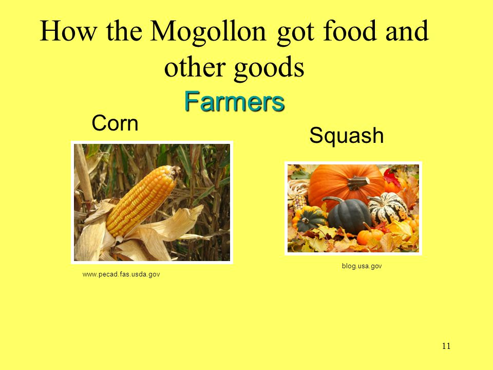How the Mogollon got food and other goods Farmers