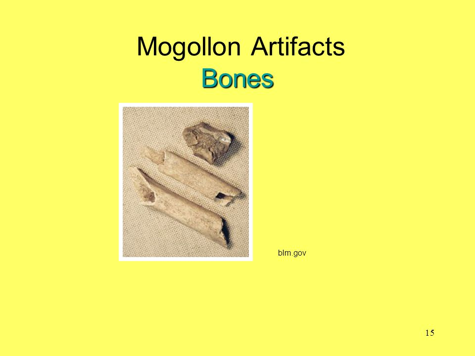 Mogollon Artifacts Bones