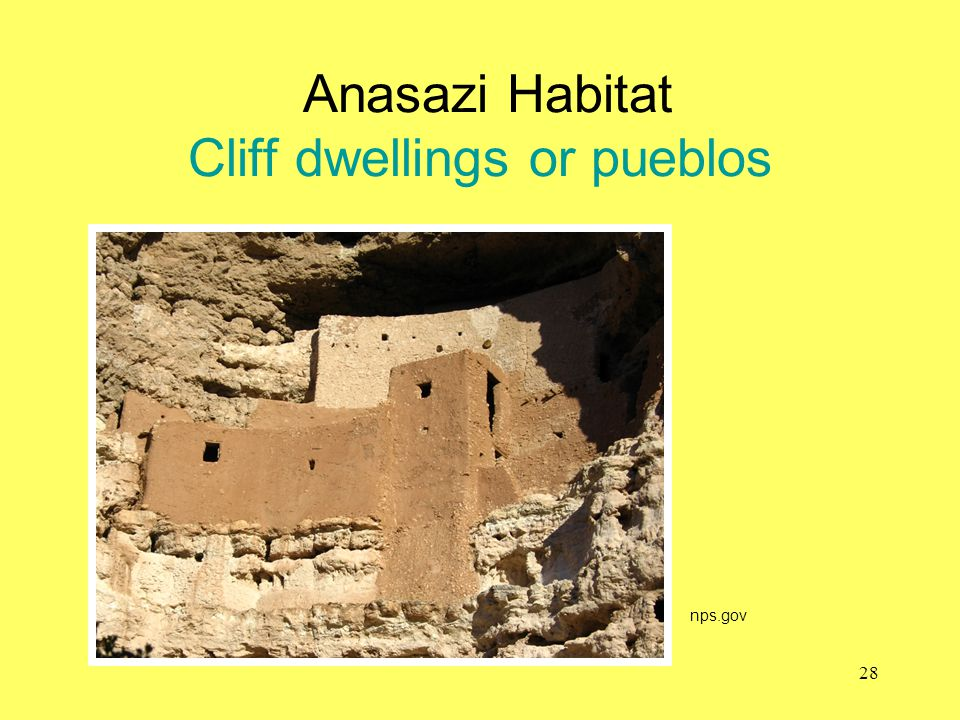 Anasazi Habitat Cliff dwellings or pueblos
