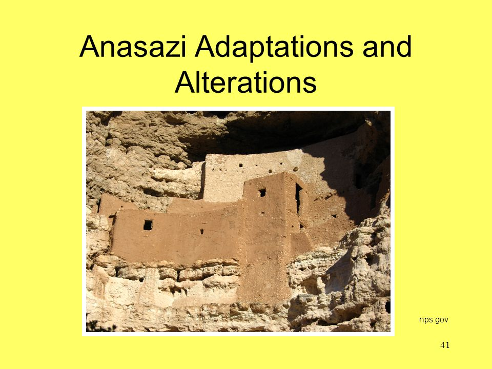Anasazi Adaptations and Alterations