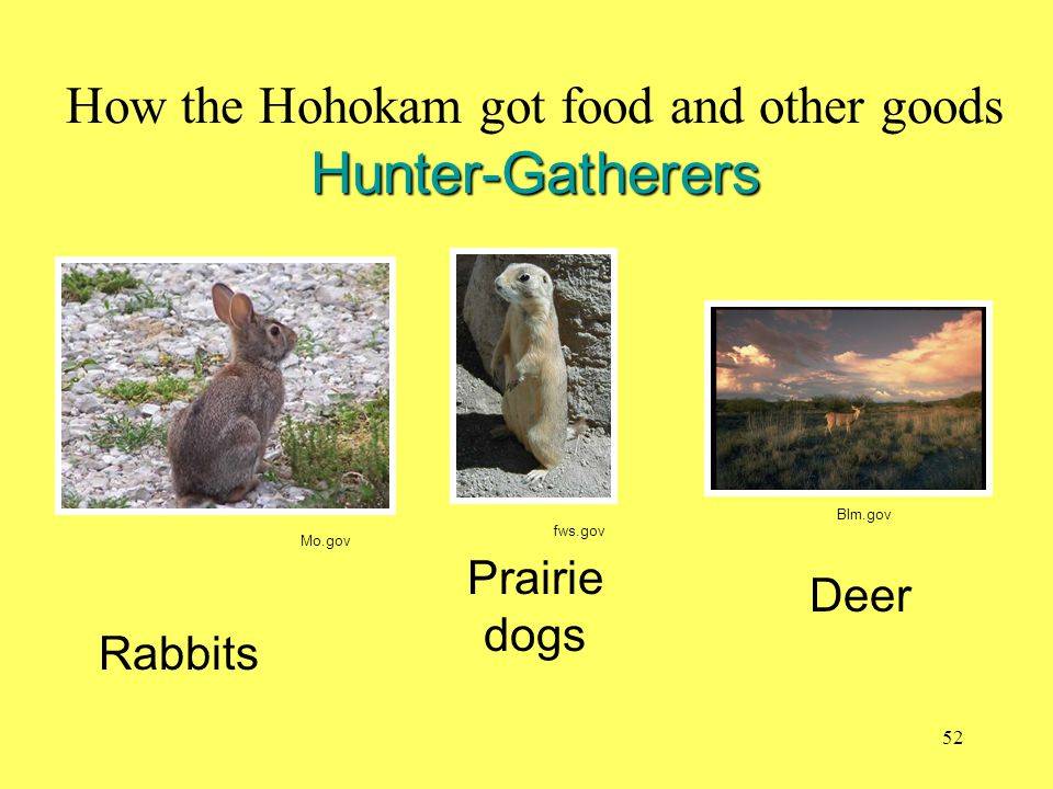 How the Hohokam got food and other goods Hunter-Gatherers