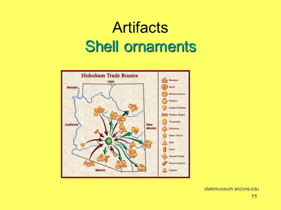 Artifacts Shell ornaments