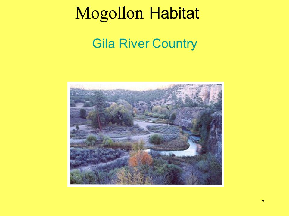 Mogollon Habitat Gila River Country blm.gov/az