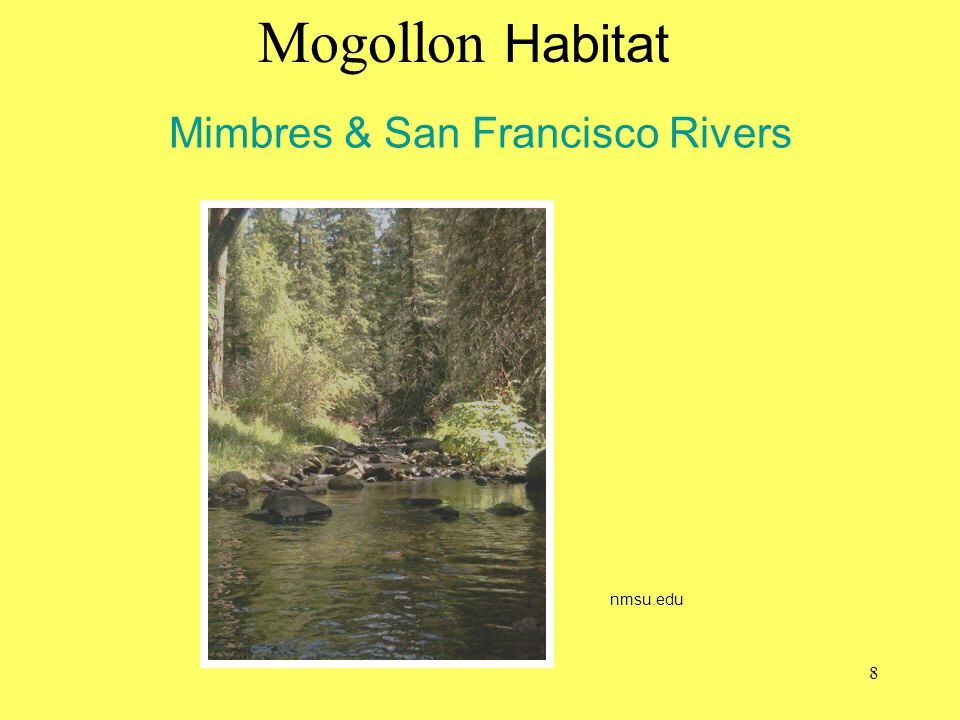 Mimbres & San Francisco Rivers