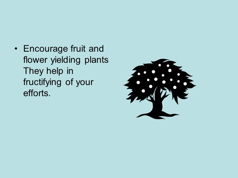 Encourage fruit and flower yielding plants They help in fructifying of your efforts.