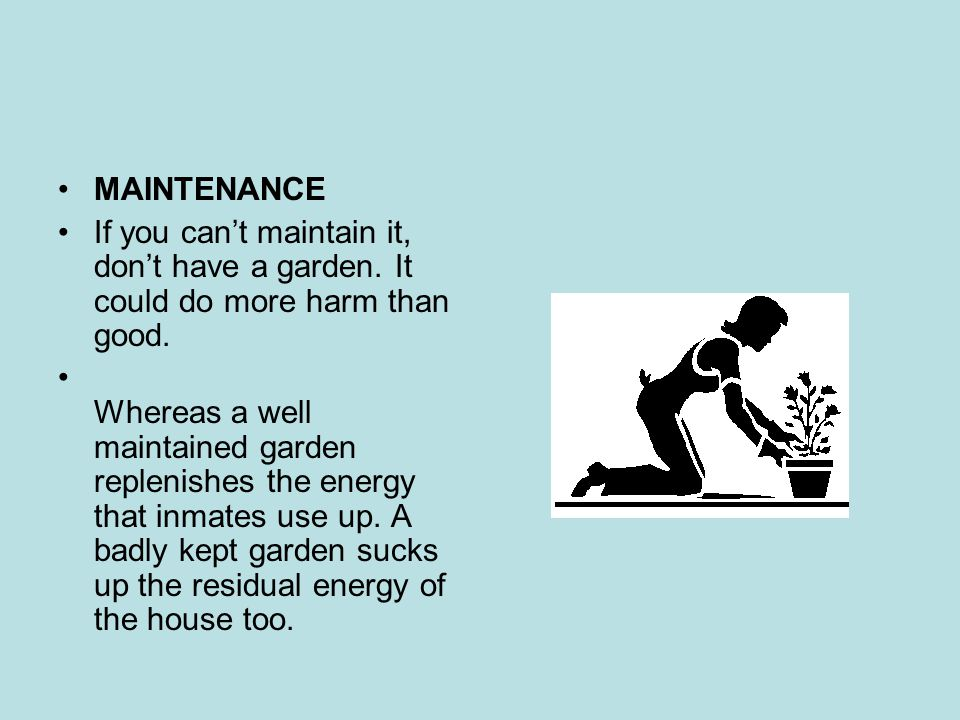 MAINTENANCE If you can't maintain it, don't have a garden. It could do more harm than good.
