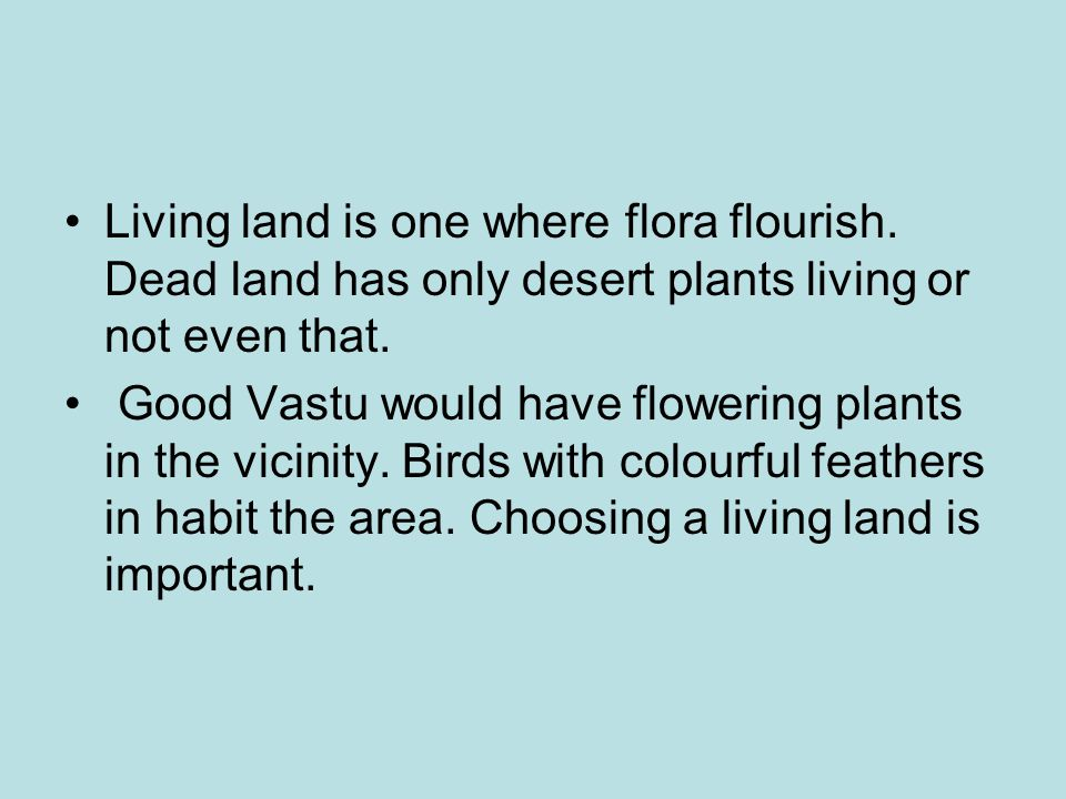 Living land is one where flora flourish